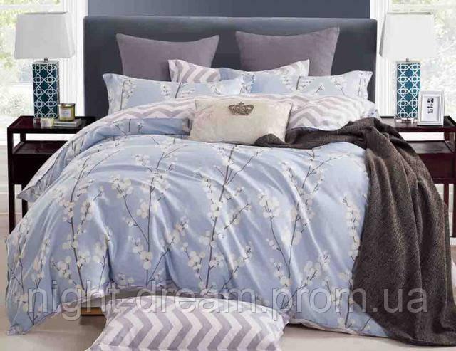 Нежное голубое постельное белье B-0104