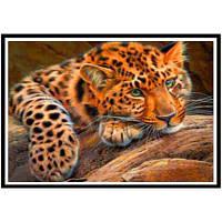 NAIYUE P003 Leopard Animal Print Draw Алмазная живопись Алмазная вышивка Коричневый