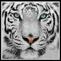 NAIYUE 9533 Полная тигровая печать для рисования Алмазная живопись Алмазная вышивка