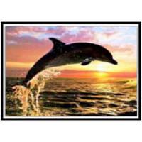 NAIYUE K040 Животное Дельфин Печать Ничьей Алмазная живопись Алмазная вышивка Глубокий серый