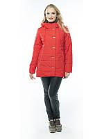 Женская весенняя куртка большой размер, фото 1