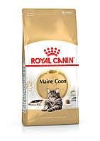 Royal Canin Maine Coon Adult 4 кг - Сухой корм для кошек породы мейн кун старше 15 месяцев