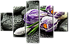 Модульная картина Крокусы на камнях 108* 70 см Код: w8299