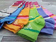 Носки женские демисезонные х/б Талько, 23-25 размер, ассорти, 21034, фото 2