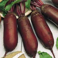 Семена свеклы столовой Витал 1 кг , Украина