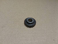 Шестерня валика (21 зуб) (пр-во МАЗ) 64221-3802055