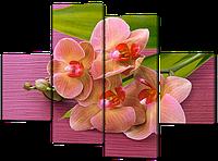 Модульная картина Нежные орхидеи в спальню