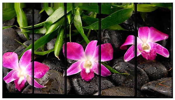 Модульная картина Розовые орхидеи и камни (картина из 5-и частей)