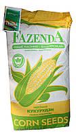 Семена кормовой кукурузы Кадр 25кг F1 Fazenda