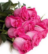 "Троянда ч/г ""Топаз"""