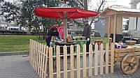 Блинная машина на дровах