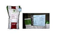 Семена кормовая свекла Рекорд 20кг (розовый) Польша