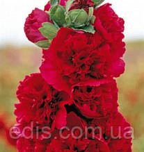 Мальва махровая Красная 0,3 г