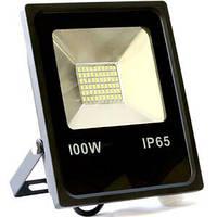 Светодиодный прожектор 100 Вт smd-100-slim IP 65 Biom