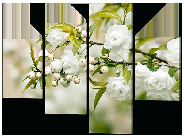Модульная картина Белые розочки