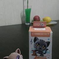 Sweet box игрушка Котенок + конфета желе 10г.
