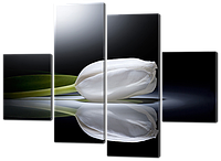 модульная картина Белый тюльпан. Хай-тек