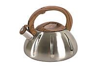 Чайник со свистком DIANA 3 литра