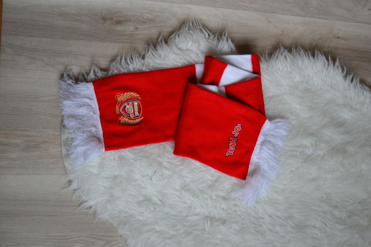 Футбольный шарф Арсенал Arsenal Junior Gunners
