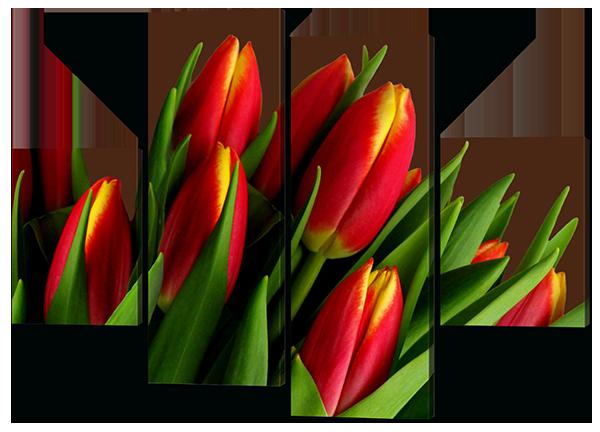 Модульная картина цветы Тюльпаны