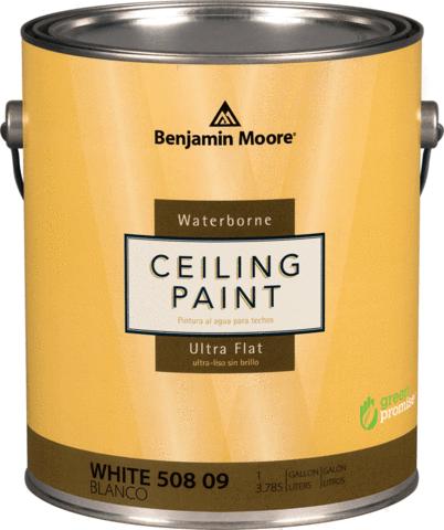 Глубокоматовая краска для потолка Ceiling Paint Benjamin Moore 3,78л