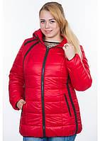 Копия Куртка женская №25 (красный)