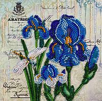 Набор для вышивки бисером Мини Ультрамарин (15 х 15 см) Абрис Арт AM-181