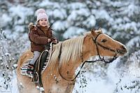 Запись на конную прогулку по лесу (Харьков)