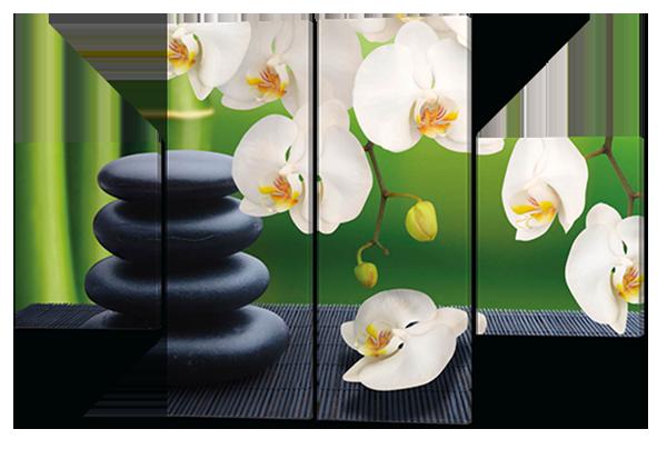 Картина модульная  Орхидеи и камни