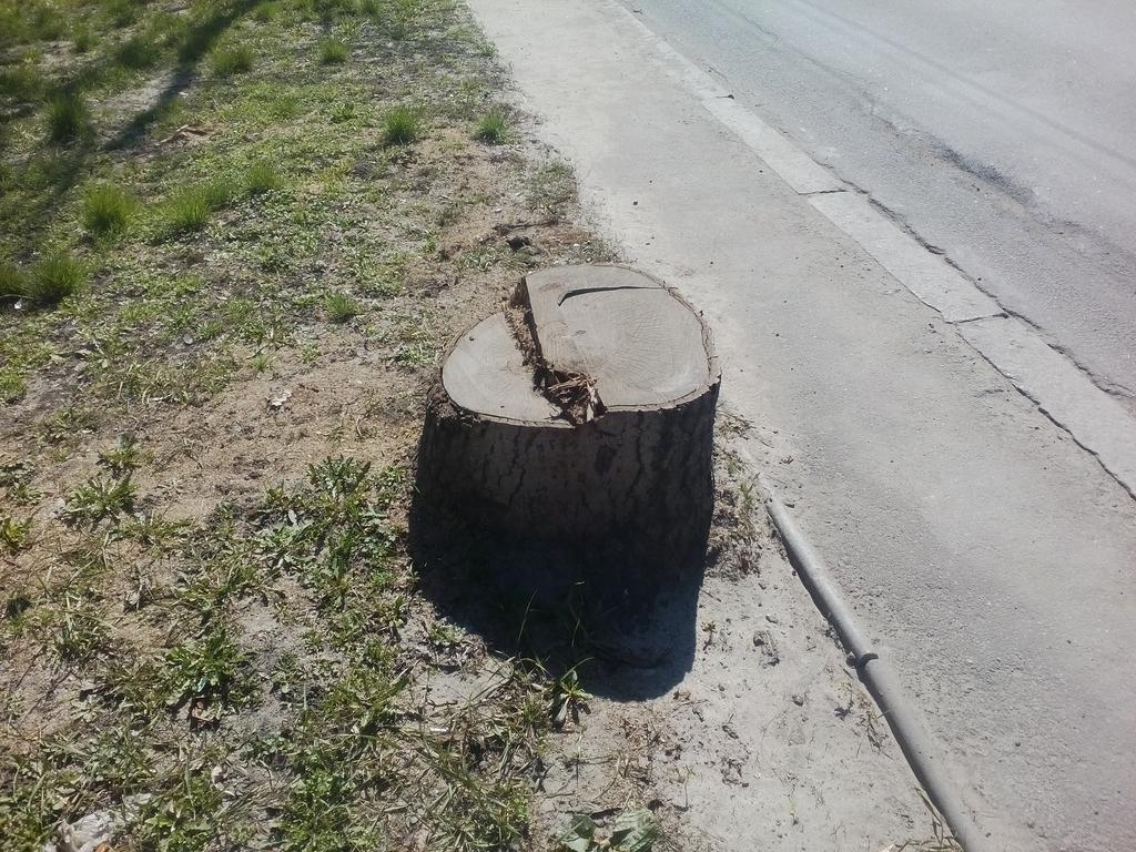 Выкорчёвывание  трёх пеньков диаметром выше 50см по ул.Ушакова г.Херсон