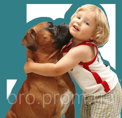 dog behavior modification training houston