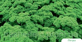Семена петрушки кучерявой Петра 50 грамм Bejo