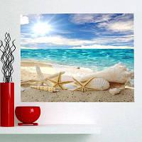 Раковина Морская Звезда Пляж Водонепроницаемый Съемный Стены Искусства Живописи 1 штука :24*71 дюйм (бес канта )