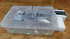 Автоматический бытовой инкубатор Курочка ряба 60 яиц в прозрачном пластиковом корпусе