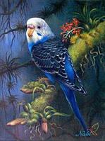 """Набор для рисования камнями """"Папуга"""""""