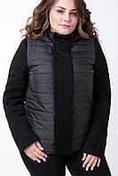 Женская демисезонная комбинированная куртка 616 / размер 48-64 / большие размеры / цвет черный