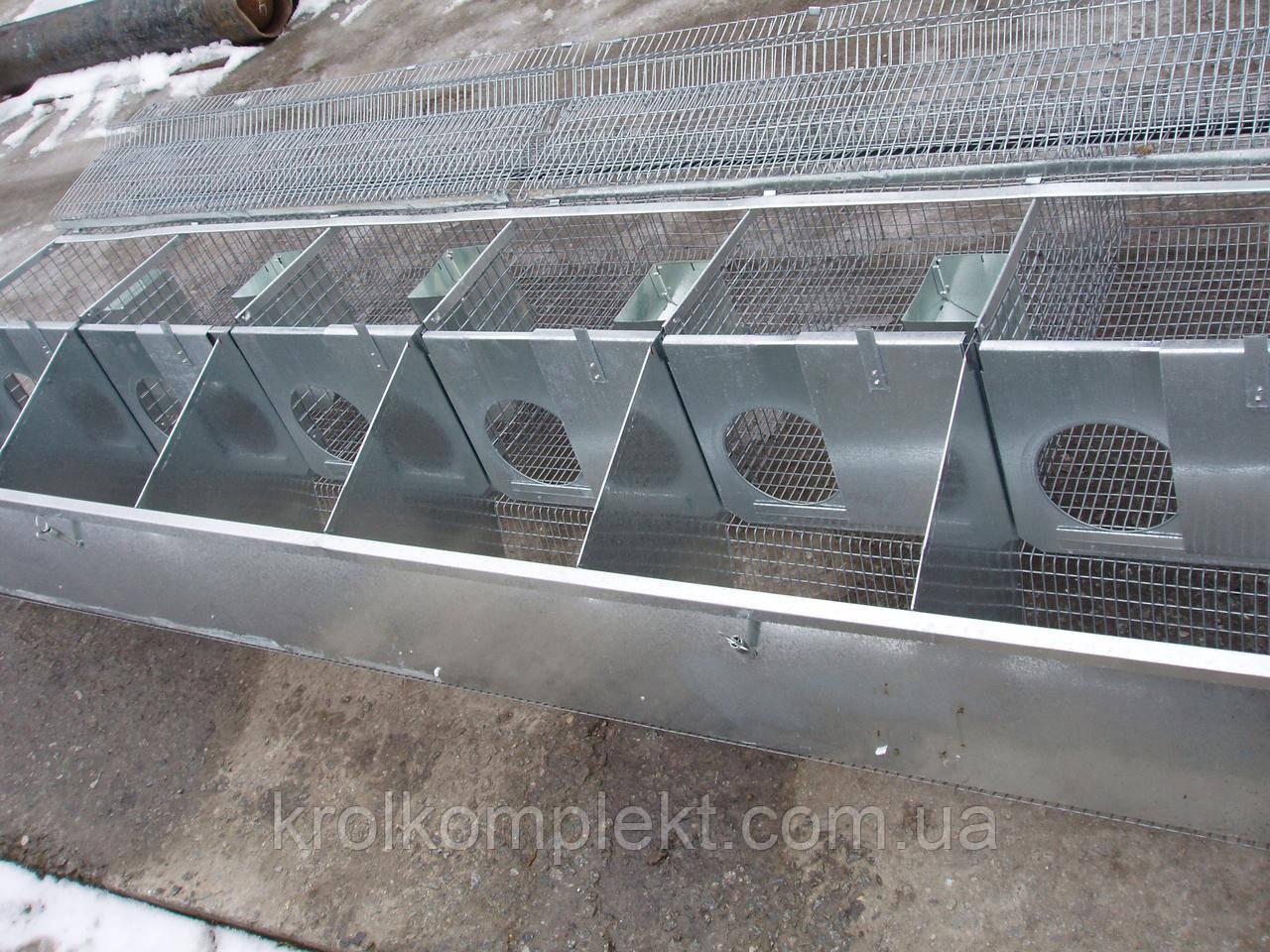 Клетка для кролей маточная КМ -6 С( универсальная )