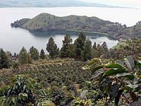 Кофе с острова Суматра