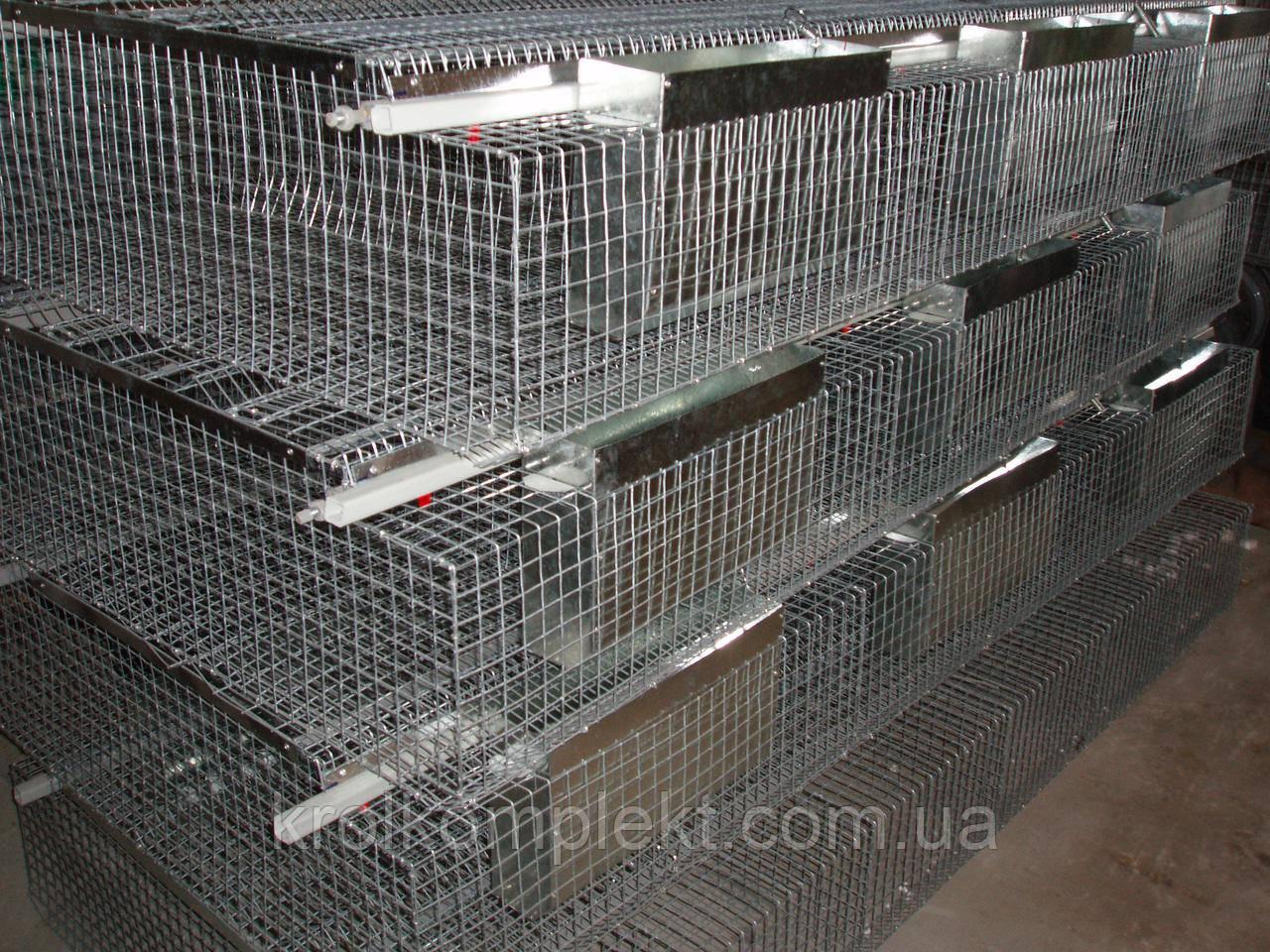 Клетка для кролей  откормочная КО-6С - (36 голов)