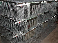Клетка для кролей  откормочная КО-6С - (36 голов), фото 1