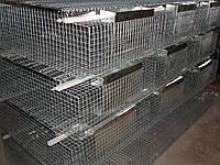 Клетка для кролика  откормочная КО - 36., фото 1