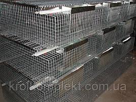Клетка для кролей  откормочная ( содержание 36 голов кролика)