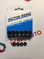 Сальники клапанов Lacetti,Nubira,Leganza,Tacuma 1.8-2.0 Пр.Victor Reinz Германия.