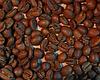 Свежеобжаренный кофе в зернах Индия Плантейшн АА (ОРИГИНАЛ), арабика Gardman (Гардман)
