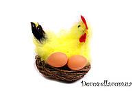 Курица в гнезде