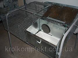 Клетка для кролей КМО -2 С ( 12 кроликов или самка с молодняком).