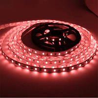YWXLight 36W 5630SMD 300-светодиодные светодиодная лента украшения DC 12В для наружная реклама Красный