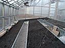 Теплица Вегетарий 3х4 Стандарт 4 мм, фото 4