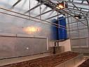 Теплица Вегетарий 3х4 Стандарт 8 мм, фото 8