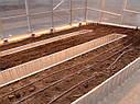 Теплица Вегетарий 3х4 Премиум 8 мм, фото 9